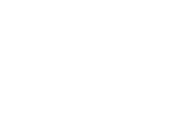 LifeWise logo in white